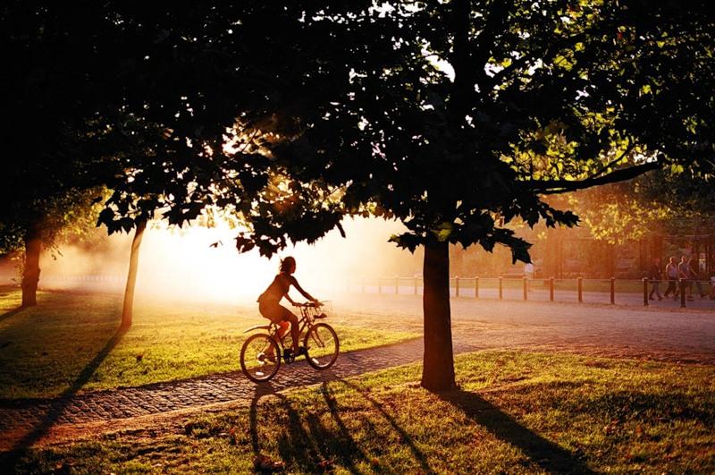 Стихи про парк осенью