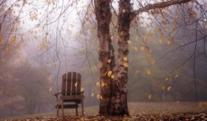 Осенние сны