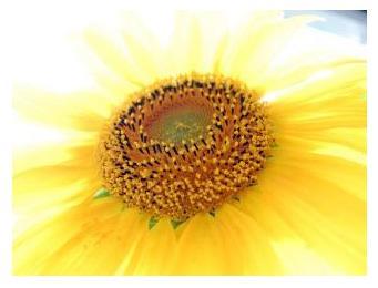 Солнышко - солнце, восход, день, закат, стихи и проза