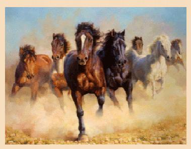 Кони мчатся, мчатся кони! Новые стихи и проза