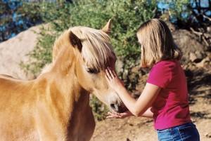 Конь - огонь