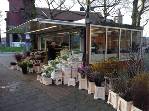 Цветы а Амстердаме