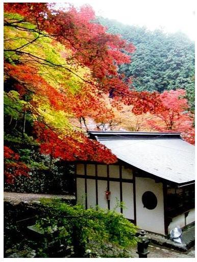 Осень!   Стихи   японских  поэтов   об  осени...