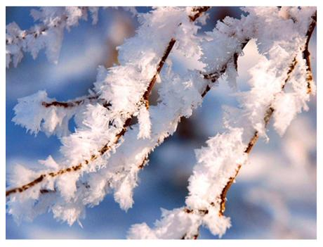 Январь, зима... Зимние забавы. Зоя Сергеева, стихи и эссе из цикла